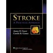Stroke: A Practical Approach