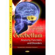 Cerebellum: Anatomy, Functions & Disorders