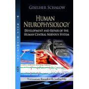 Human Neurophysiology: Development & Repair of the Human Central Nervous System