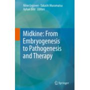 Midkine: From Embryogenesis to Pathogenesis and Therapy