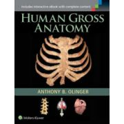 Human Gross Anatomy