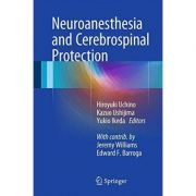 Neuroanesthesia and Cerebrospinal Protection