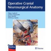 Operative Cranial Neurosurgical Anatomy