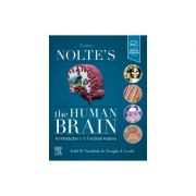 Nolte's The Human Brain,