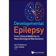 Developmental Epilepsy