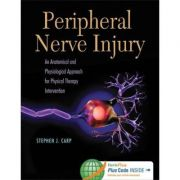 Peripheral Nerve Injury An Anatomical and Physiological Approach for Physical Therapy Intervention