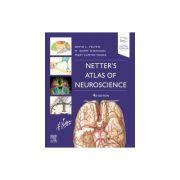 Netter's Atlas of Neuroscience