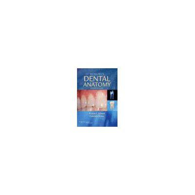 Woelfel's Dental Anatomy Its Relevance to Dentistry