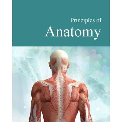 Principles of Anatomy