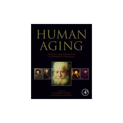 Human Aging From Cellular Mechanisms to Therapeutic Strategies